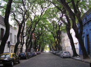 Palermo Buenos Aires - The largest neighborhood in Buenos Aires - Palermo boroughs: Palermo Hollywood, Palermo Soho, Palermo Chico