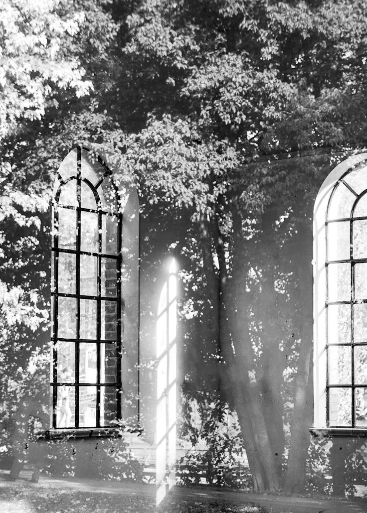 Marianne Brattberg - Pumphuset. Black and white magical photograph of nature taking over an old building. Available as poster and laminated picture at Printler, the marketplace for photo art.