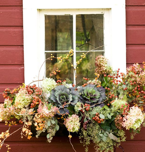 Where's the windowbox? Who cares when you have a display like this? From ornamental cabbage and dried hydrangea to loops of bittersweet fruit and bunches of rose hips, this display oozes charm. And best of all, it will still look good after frost! via Lowe's Creative Ideas
