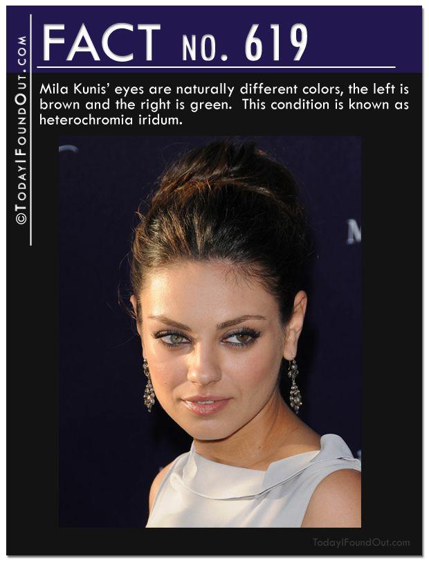 25+ best Blue eye facts ideas on Pinterest   Green eyes ... - photo#22