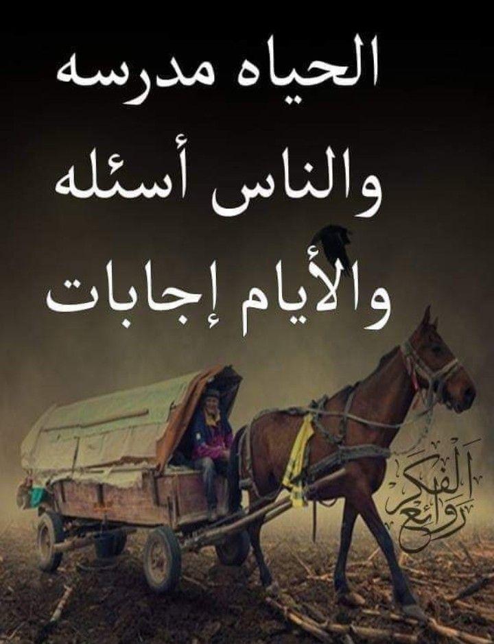 Pin By Ali Meziane On صباحات In 2021 Poster Art Shams