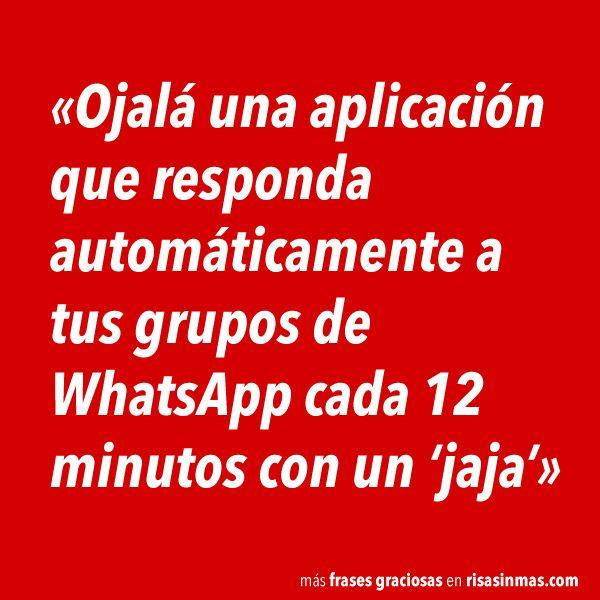 Responder automáticamente a tus grupos de WhatsApp. #humor #risa #graciosas #chistosas #divertidas