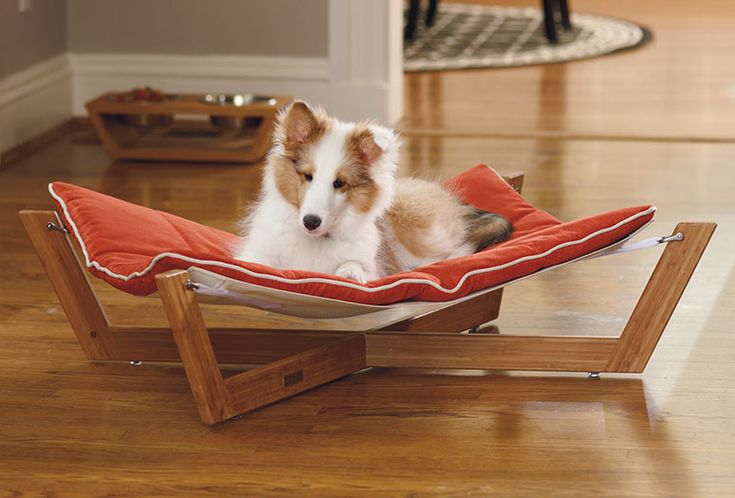 The cool new Bambu Pet Hammock is not only a luxurious and modern sleeping surface for your well-pampered dog or cat, its unique suspended design also helps to relieve pressure on their bones and joints too.