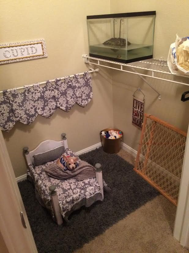 this girl turned her spare closet into a doggie bedroom and wow rh pinterest com