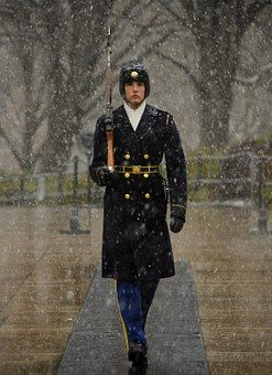 Sentinel, Tomb Of Unknown Soldier