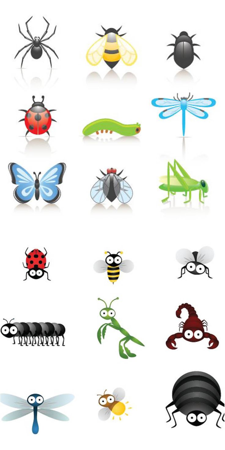 Cartoon+Bugs+Clip+Art | Cute cartoon insects vector | Vector Graphics & Vector Illustrations