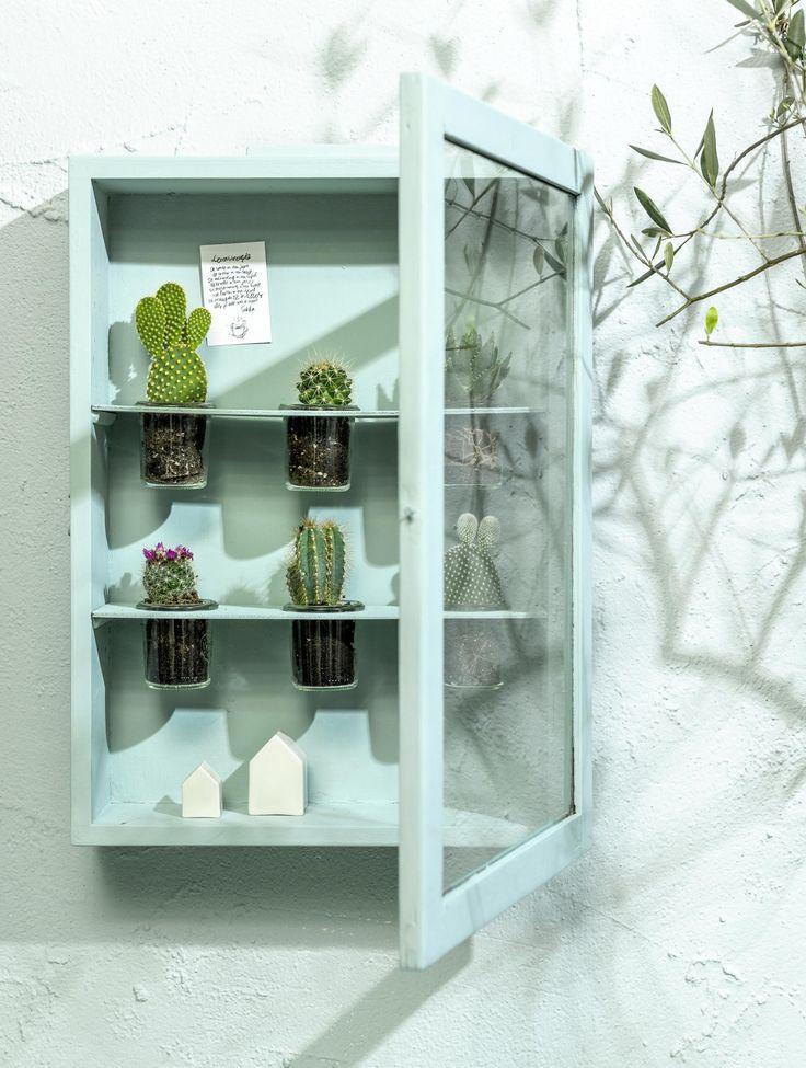 Van een kastje maak je in een handomdraai een originele cactus- of kweekkas. Zo krijgt die kale muur ineens een verrassend mooi botanisch tintje.