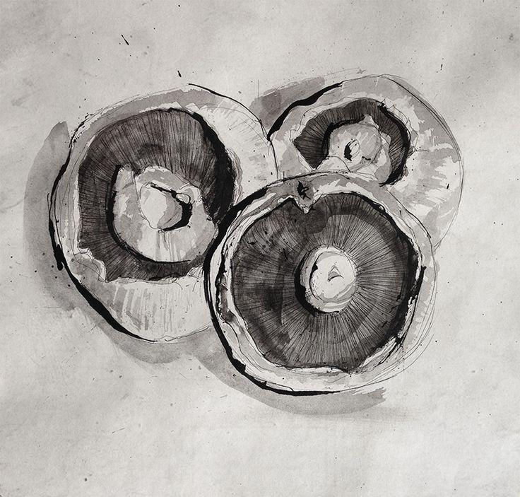 Pen and Ink - Mushrooms blog/portfolio of Mr Colin Brewer