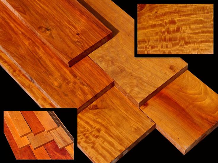 Exotic Wood Pernambuco Brazil Wood Or Pernambuco Is A