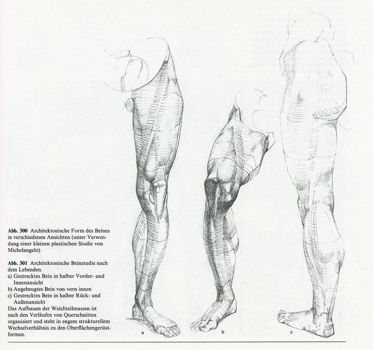 Schön Menschliche Anatomie Referenz Für Künstler Fotos - Anatomie ...