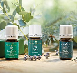 FARM OILS MINI COLLECTION (540302)  Retail $85.86  ** Order & pay for before 26th Nov: $77.27  Transport your family to the Young Living farms with these invigorating oils. This collection relaxes and supports the mind and body with 5 ml bottles of Eucalyptus Blue, Pine, and Idaho Blue Spruce. #YoungLiving #YL #YL2014Christmas #essentialoils #FarmOils #EucalyptusBlue #Pine # IdahoBlueSpruce