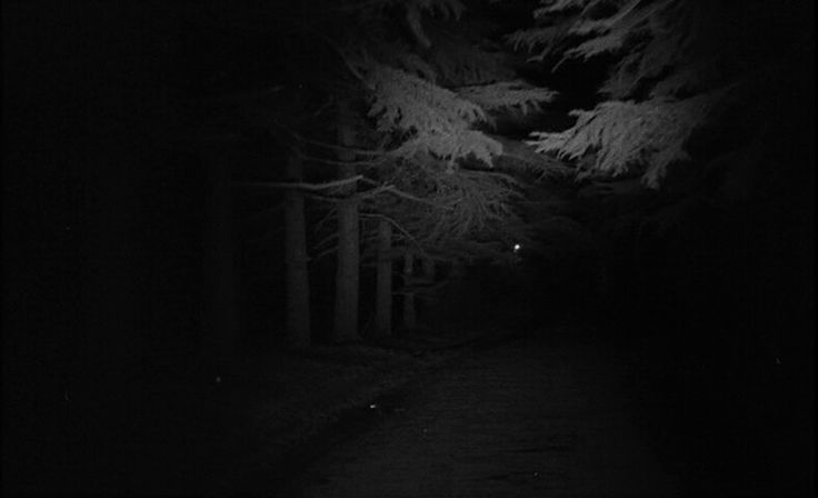 Effective opening scene showing roadside trees coming into view as they are illuminated by car headlamps.