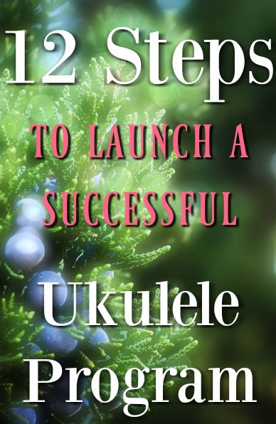 12 Steps To A Successful Ukulele Program