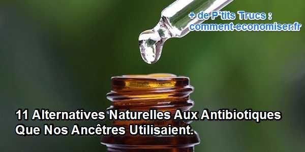 Bien avant l'invention des antibiotiques modernes, dans les années 40, nos ancêtres utilisaient des aliments et des plantes médicinales pour traiter les infections et les maladies. Alors pourquoi ne pas continuer à les utiliser aujourd'hui ?   Découvrez l'astuce ici : http://www.comment-economiser.fr/alternatives-naturelles-antibiotiques.html?utm_content=buffer1db41&utm_medium=social&utm_source=pinterest.com&utm_campaign=buffer