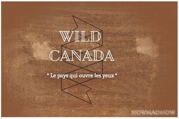 ► NowMadNow ►Loger dans une yourte au Canada: camping, île de Vancouver Victoria