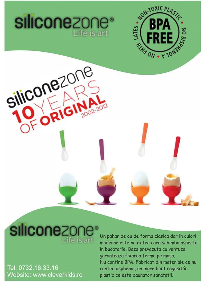 Poster SiliconeZone | in-time.ro