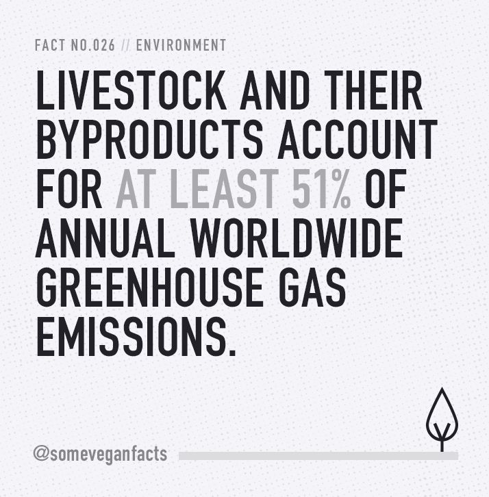 Some Vegan Facts - Fact 026. Source...