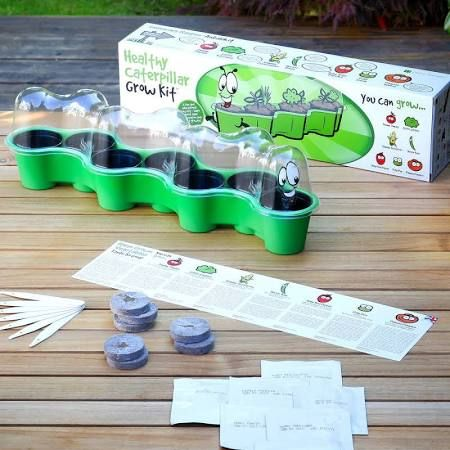 seed growing kit for kids - Google Search