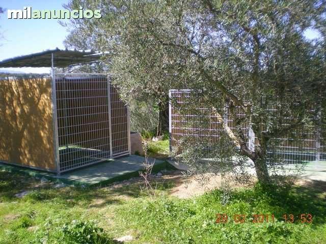 . Se vende 1 jaula para perros de 2x2 m. Se ha usado para guardar perros espor�dicamente. En las fotos se puede ver perfectamente su estructura. Se puede contactar por email, tel�fono o whats app. La persona que la quiera deber� venir a por ella.