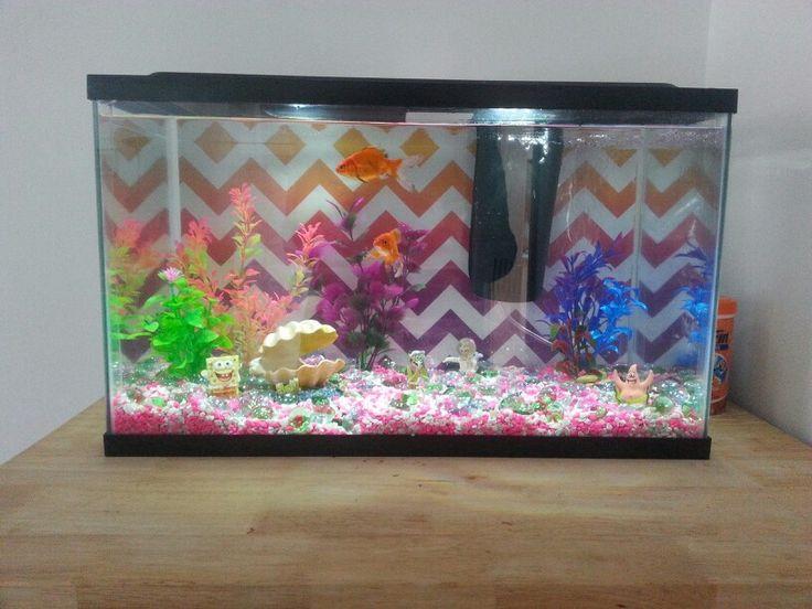 Best 25 10 gallon fish tank ideas on pinterest for Fish tank background ideas