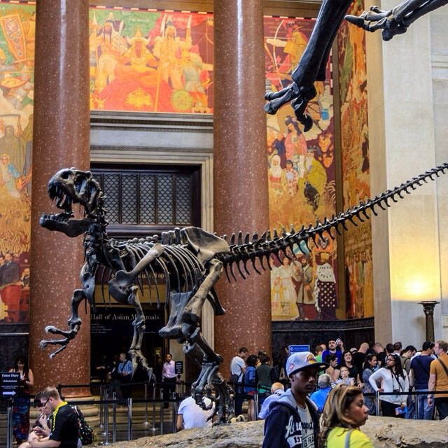 American History of Natural Museum