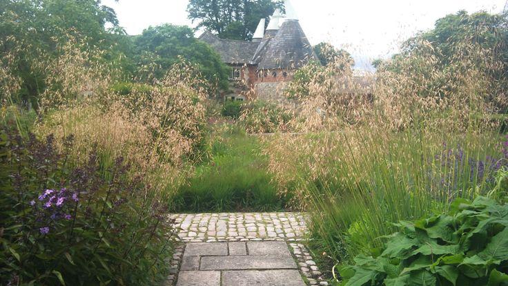 Stipa gigantea at Bury Court | Garden Design Eye