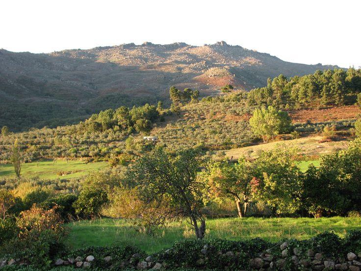 Vistas desde San Martín hacia la Sierra de Eljas con sus cumbres graníticas, el bosque de Ojesto bajo ellas y los cultivos junto al pueblo.