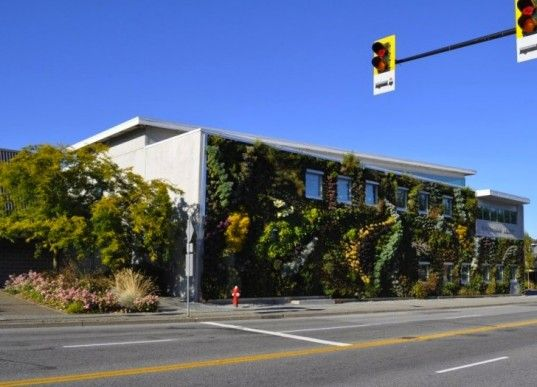 The Semiahmoo Libraryu0027s Larger Than Life Living Wall Features Over 10,000  Plants. Living WallsGreen ...