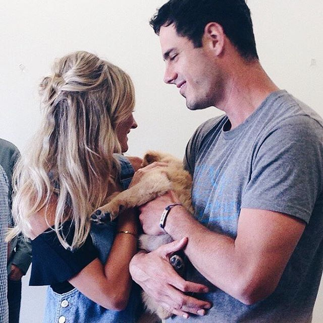 Instagram media lauren_bushnell - Puppy fever.