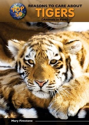 The largest cat in the world! Besides being well known for their beautiful striped orange fur and hunting prowess, tigers possess many other traits that make them special. Did you know a tiger's stripes are as unique as a person's fingerprints? Or that the Sumatran tiger has webbed feet to help it swim faster? And tigers can leap up to thirty feet in a single pounce! Read fifty fun facts about tigers that make these magnificent creatures worth saving from extinction and how you can help.