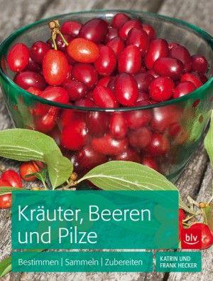 Kräuter, Beeren und Pilze: Bestimmen Sammeln Zubereiten von Frank Hecker, BLV Buchverlag 2015, ISBN-13: 978-3835412712