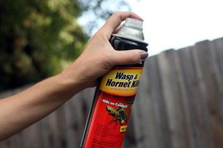 Home Remedies for Killing Wasps | eHow