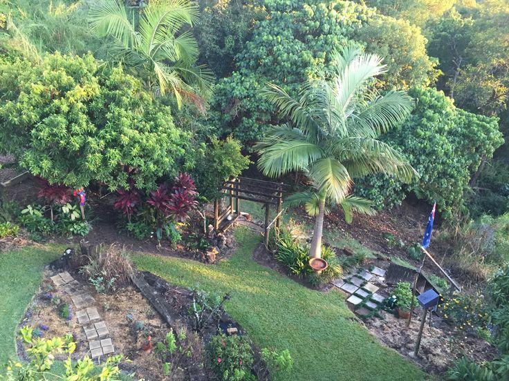 My lower back garden