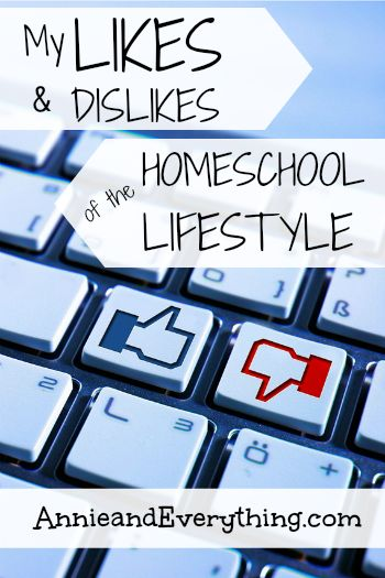 Not sure if the homeschool lifestyle is right for you? Read to find out the reality of how it plays out in our home.