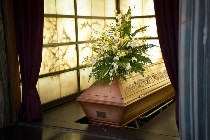 Coffin stock photo image of brown window floristry