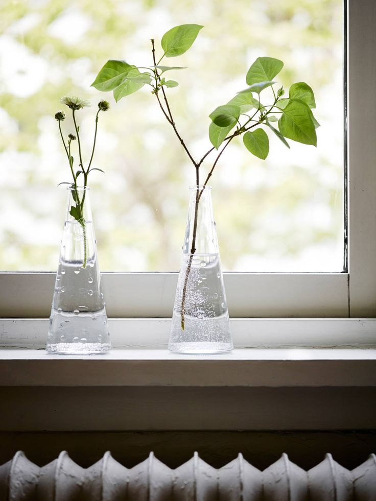 Vaser i fönster