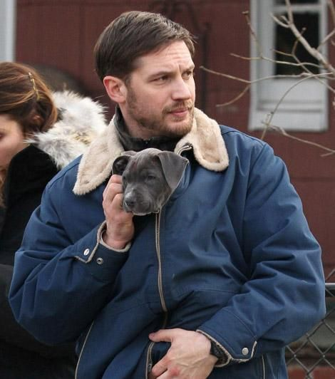 best things on earth right there #tomhardy #puppy
