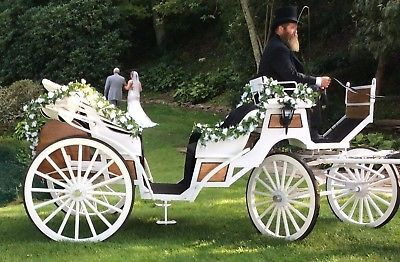 Vis A Vis Horse Drawn Carriage Horse And Carriage Wedding Wedding Carriage Horse Wedding