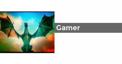Gamer   Gamer or Gamer Girl?