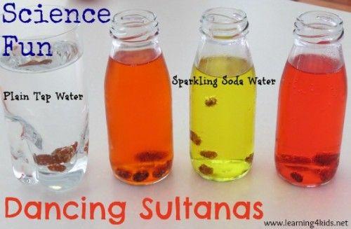 Science Fun – Dancing Sultanas