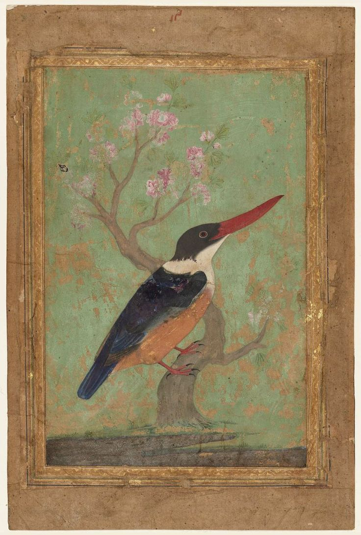 Mansur, Kingfisher, Indian, Mughal period, about 1620.