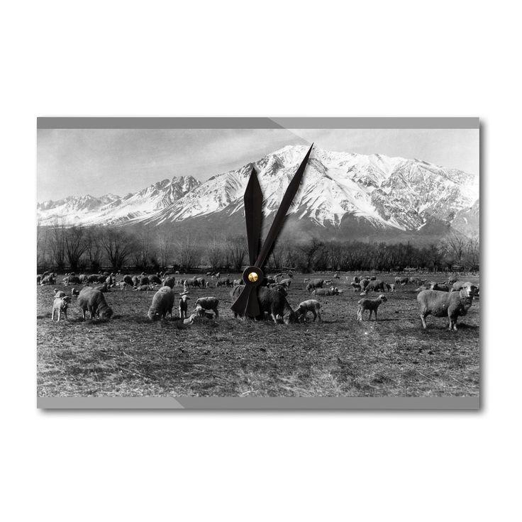 Bishop, CA Mt. Tom, Sheep and Lambs Vintage Photo (Acrylic Wall Clock), Black (Plastic)