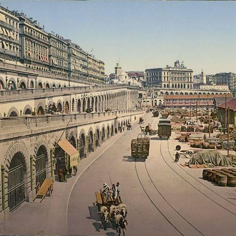 Alger centre,,, ses Quais, et ses Calèches :) 1890 #follow4follike4followlow#y#like4like#likeforlike##followers #algérie#Algeria#dz#tunisia#lybia#polisario#mauritania#sudan#egypt#saudiarabia#ksa#uae#qatar#dubai#kuwait #jordan#syria#@#palestine#iraq#turkey#istanbul#france#paris#germany