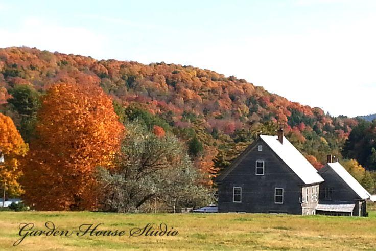 Vermont #foliage