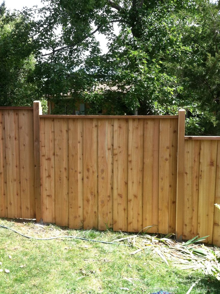 17 best images about backyard fence landscaping on for Privacy fences