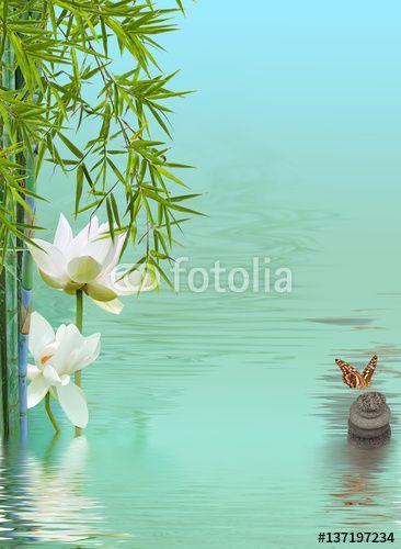composition détente, lotus, bambous et papillon