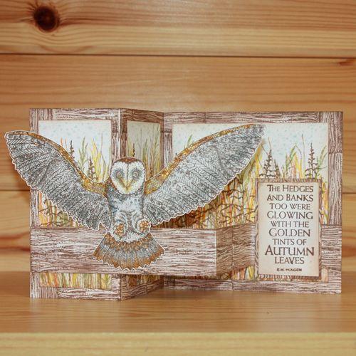 CS167D Janies Sammlung – Orla Owl A5 Briefmarkenset von Janie Burnett -… – Craft ideas