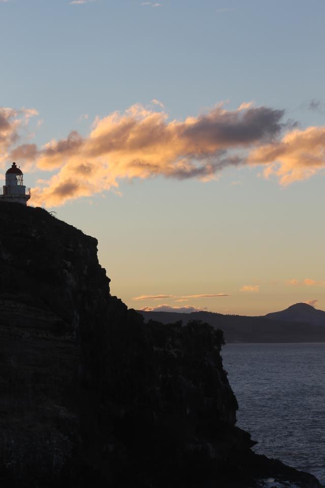 Taiaroa Head, Dunedin   (First light 1865)
