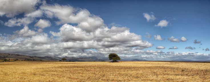 Landscape in South Africa by Dirk-R on 500px