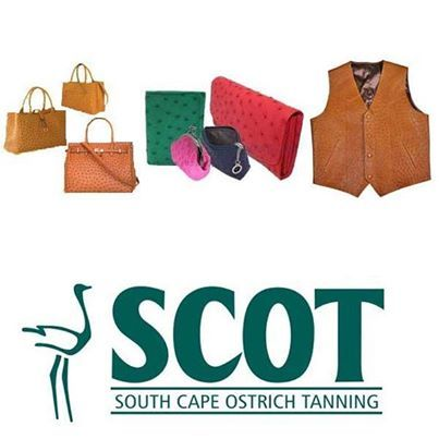 SCOT is one of the largest and leading producers of ostrich leather in the world. SCOT's quality driven tanning processes allow leather goods manufacturers to mold SCOT ostrich leather into the finest crafted and functional finished goods such as handbags, purses, wallets, footwear and a variety of accessories. Read More: http://on.fb.me/19tOPYj #ostrichleather